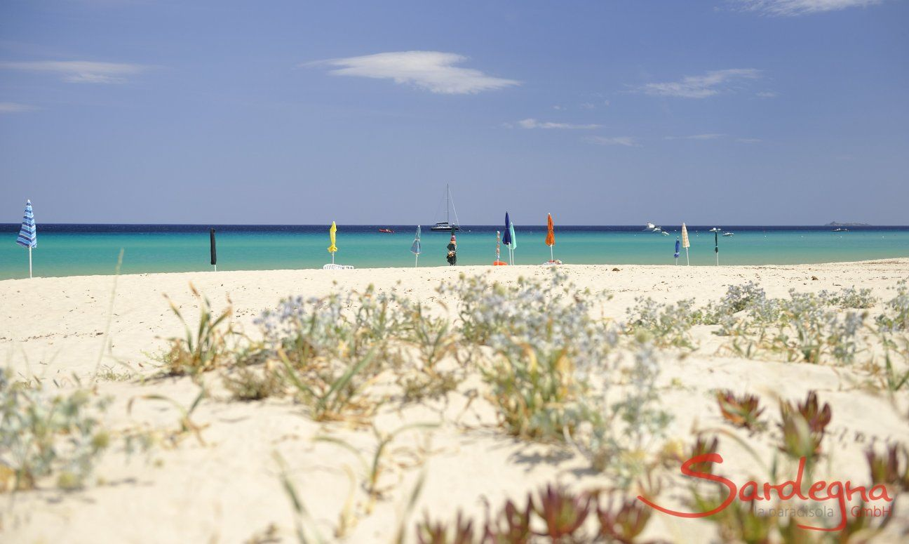 Beach of Costa Rei