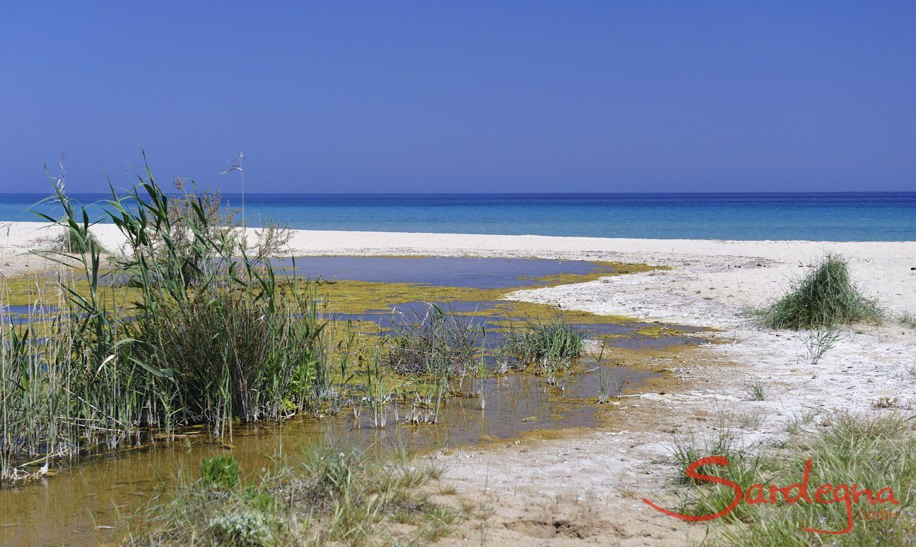 Beach in fronf of Rei Sole