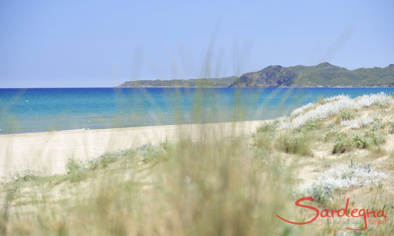 Beach Torresalinas 2 km