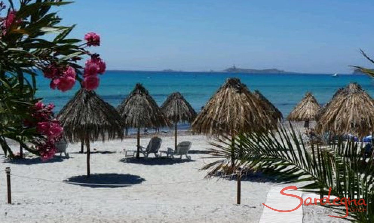 Ombrella and sunlounges for rent just in front of Villa Liliana