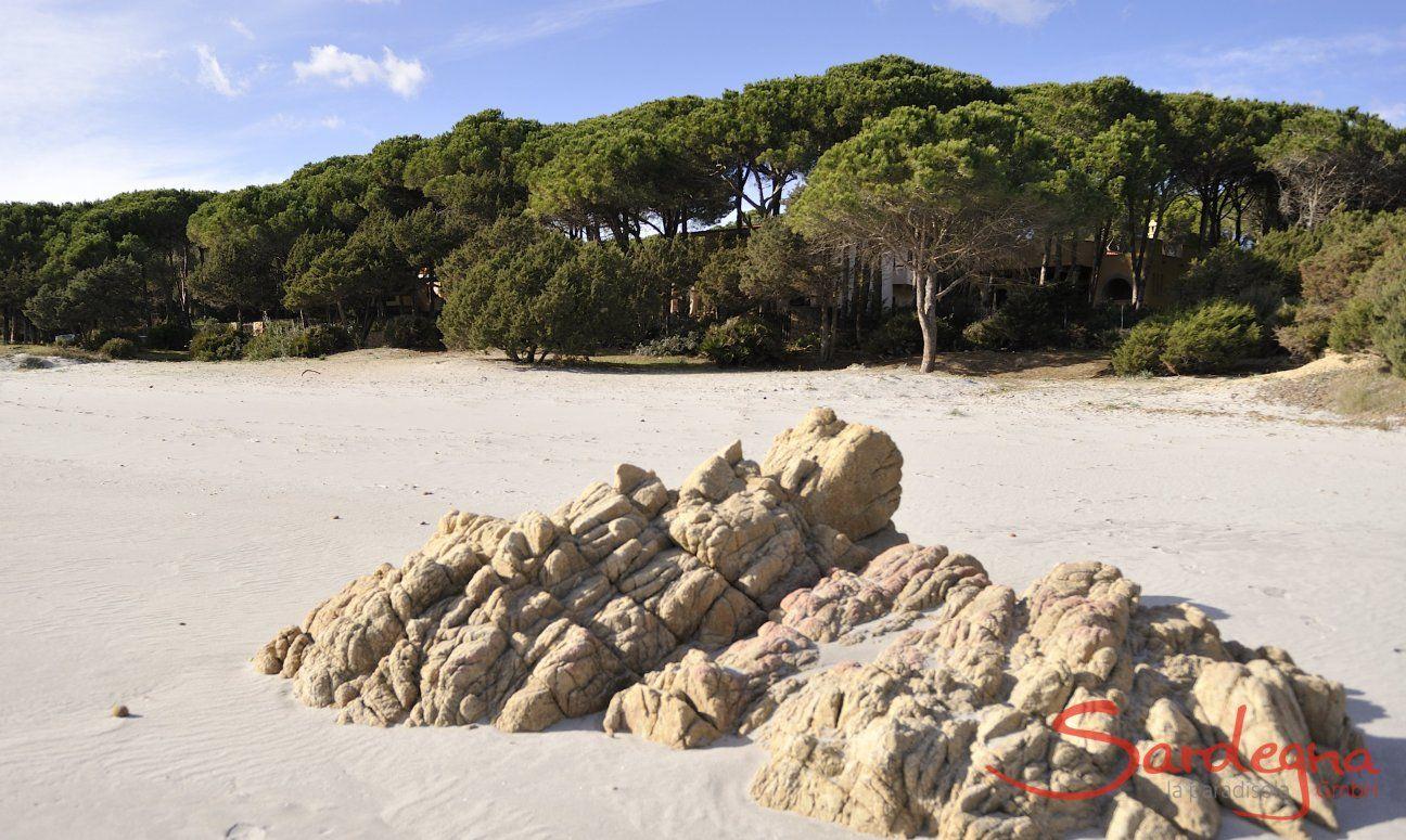 Beach Cala Liberotto