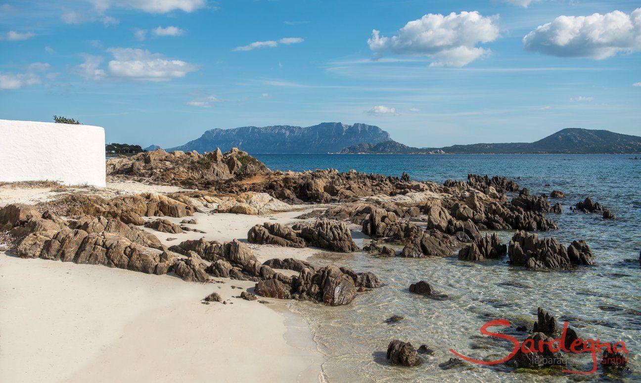 Beach Pellicano
