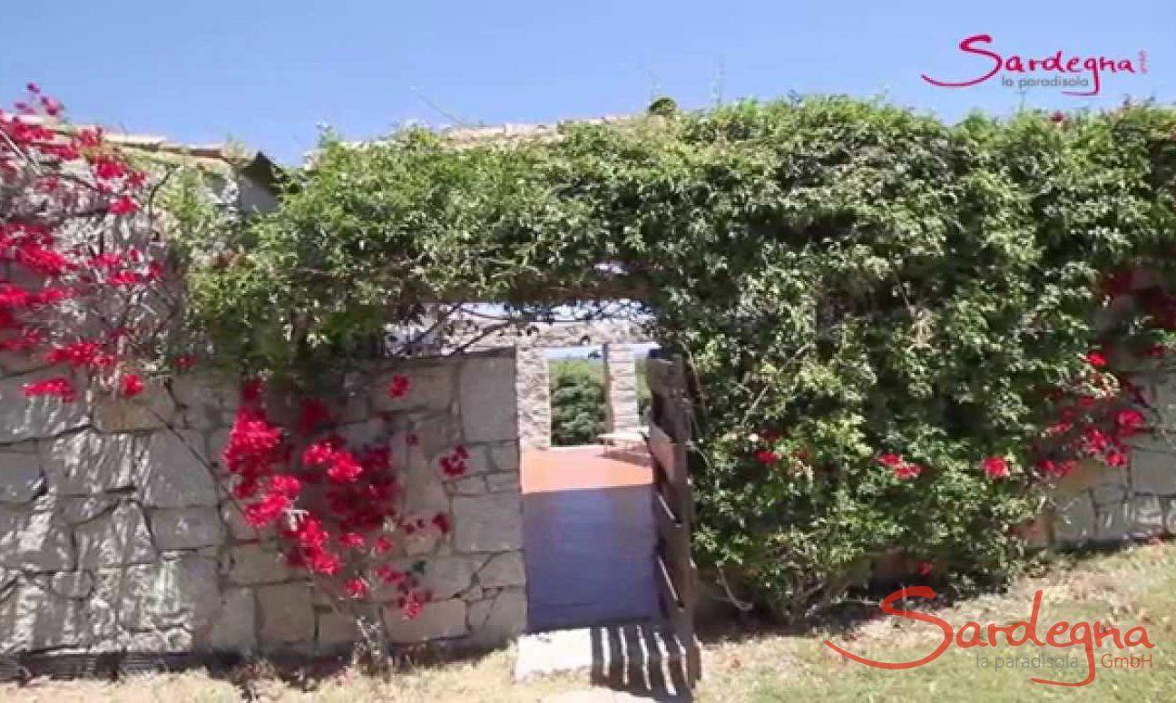 Video Casa 3