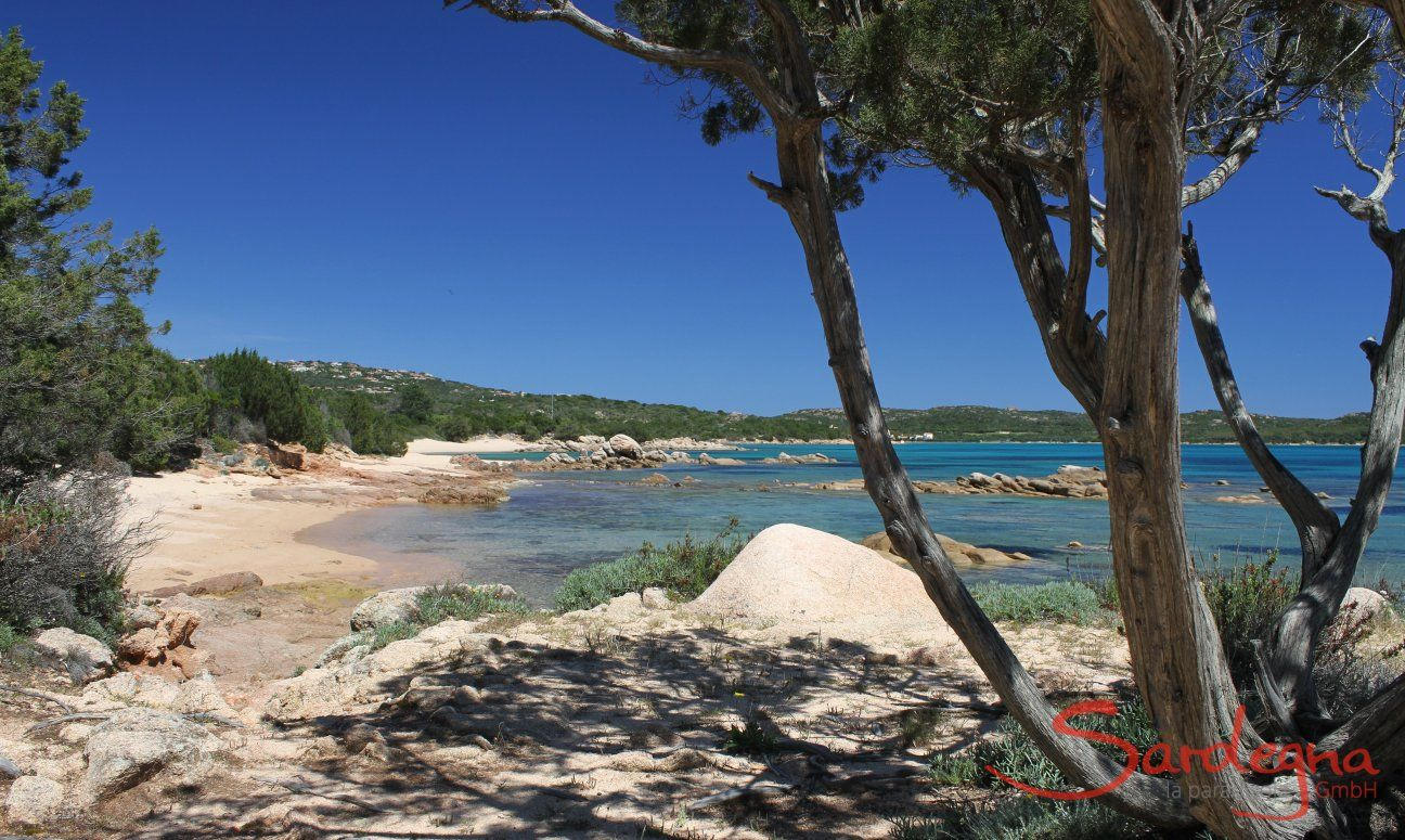 Beach Cala di Volpe with small bays, rocks and green plants
