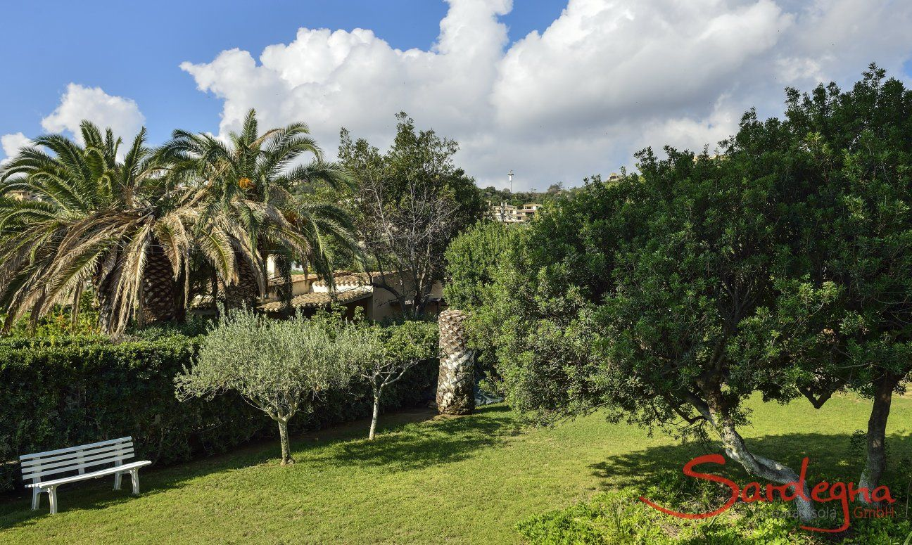 Groomed and green garden of the villa