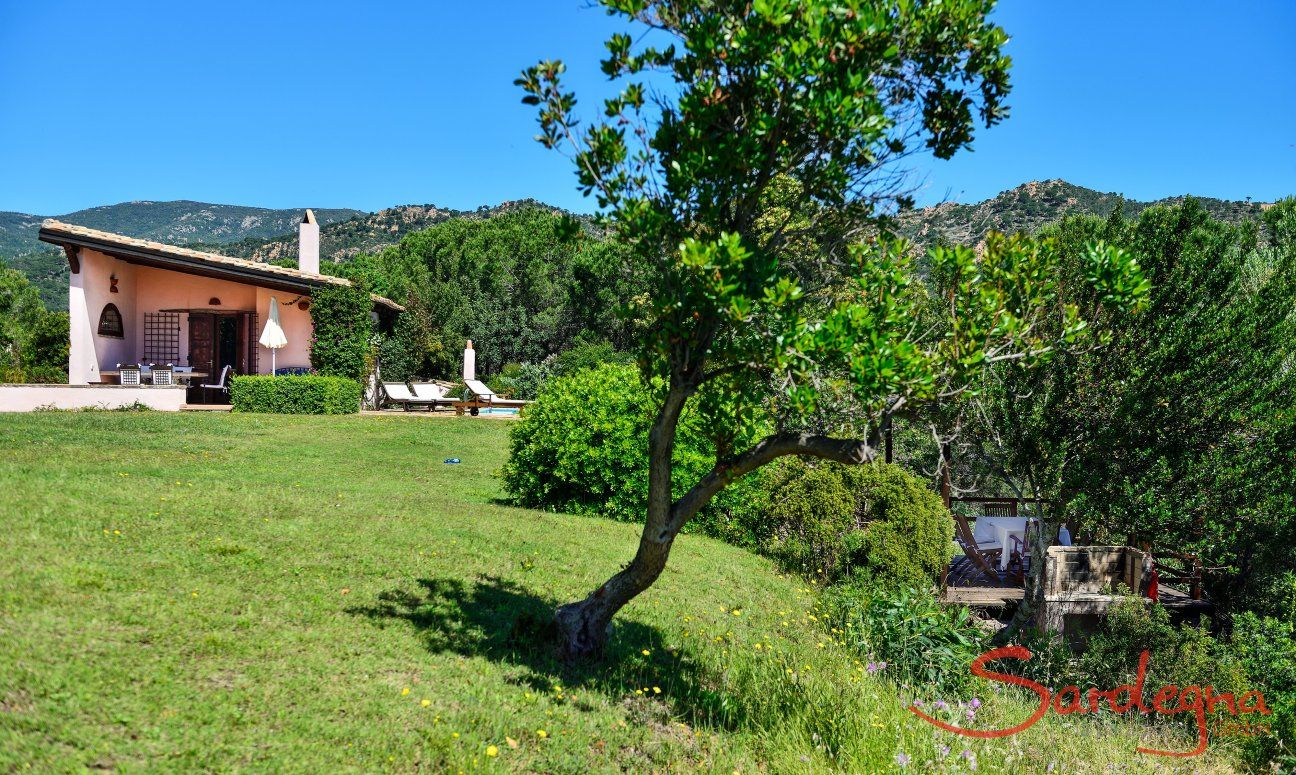 Natural garden with trees in front of the villa