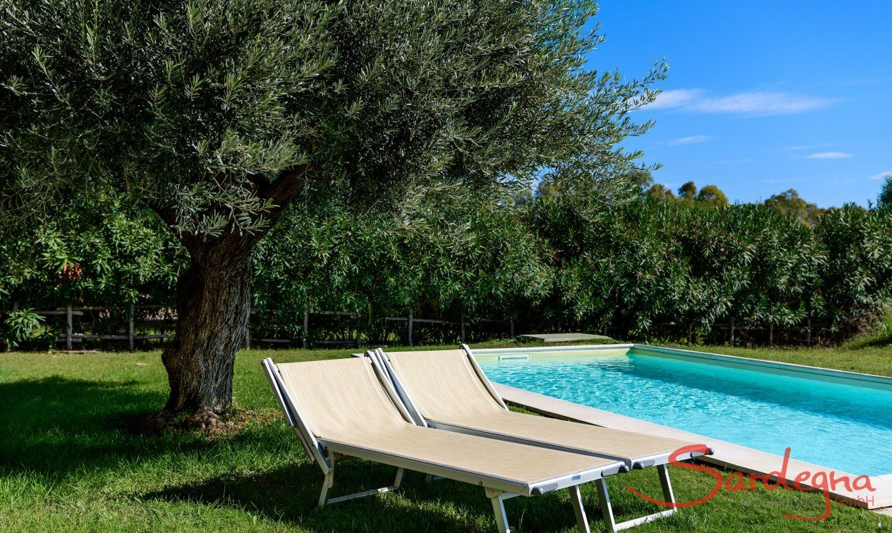 Sunbathing by the pool of  Villa Campidano 21