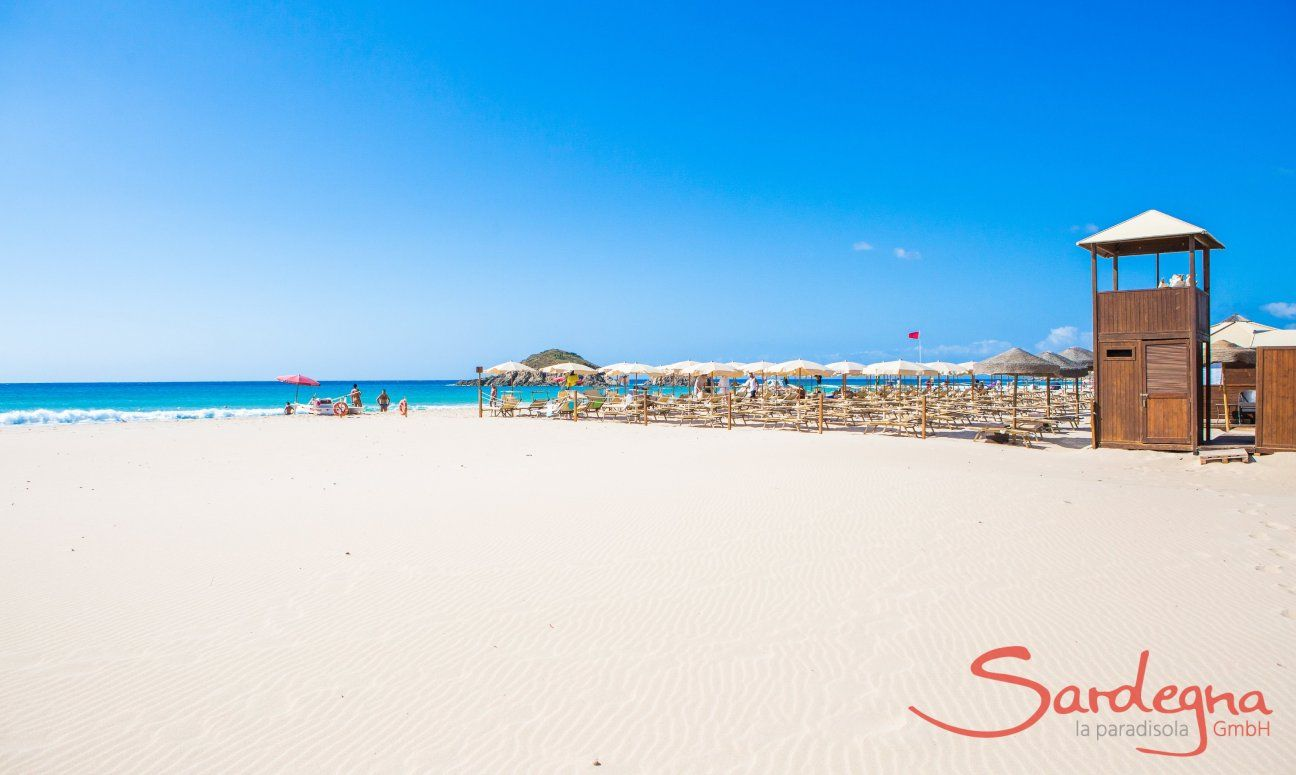Beach Chia