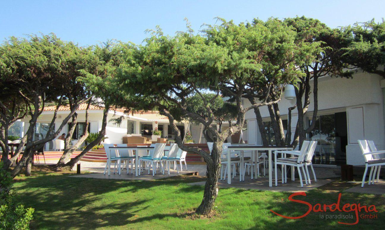 Tables of the Restaurant in Portobello under juniper trees