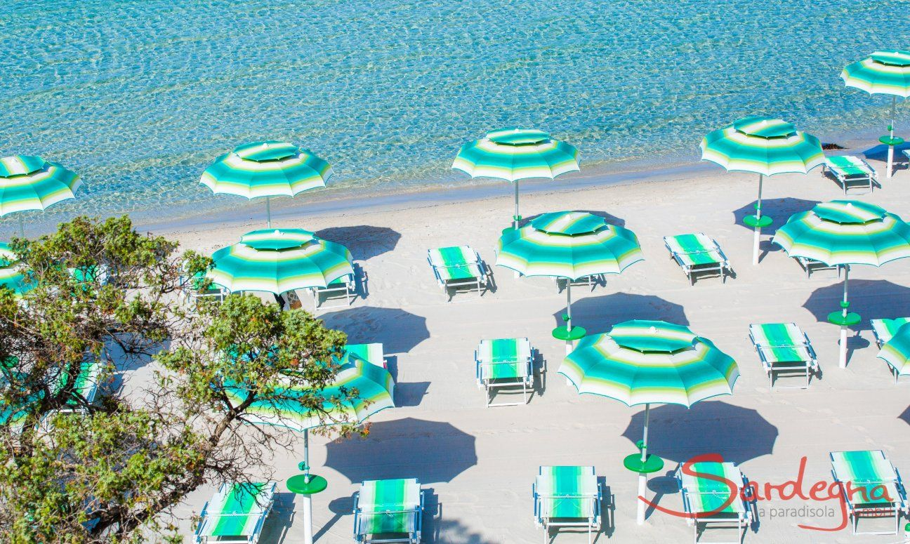 Parasols and sunbeds for rent with a lot of space on the white beach of Maria Pia, Alghero
