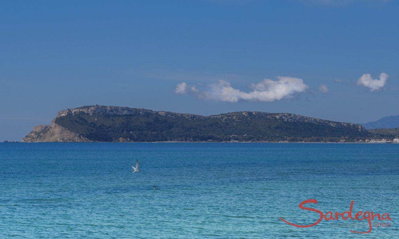 Turqoise sea in the Gulf of Angels in Cagliari