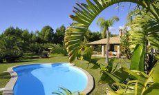 Pool, among the beautiful garden