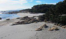 Beautiful coast with white sandy beach near the house