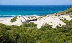 Beach Rena Maiori - Aglientu, North Sardinia