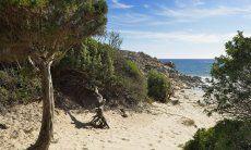 Beach of Chia (10 km)