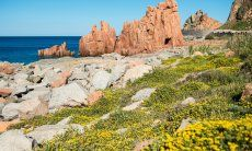 Sight; Rocce Rosse, Arbatax