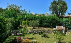 Beautiful garden of the villa