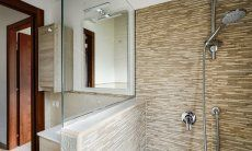 Modern bath with shower