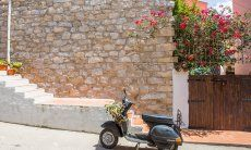 Vespa parked in front of a typical wall of stone an a blooming Oleandre in Santa Teresa di Gallura
