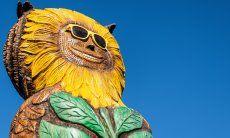 Owl statue Villetta 3 Costa Rei