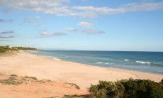 Beach App. Pino