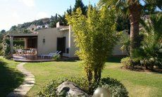 House with a big garden