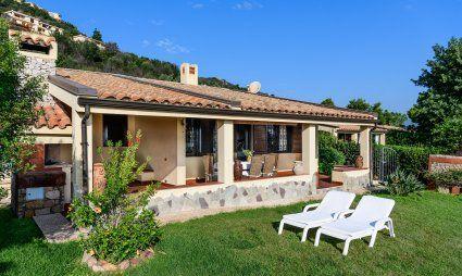 Garden and terrace