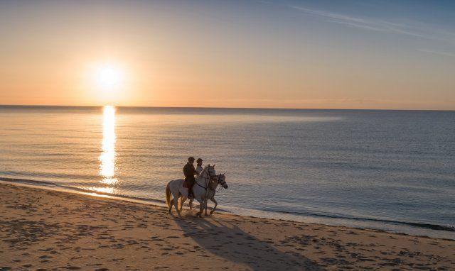 Horsebackriding at sunrise on the beach of Rei Sole, Costa Rei